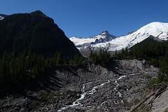 Inter Fork (Sean Munson) Tags: washington hiking nationalpark mountrainiernationalpark emmonsglacier glacier littletahoma mountrainier rainier landscape mountain mountains