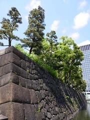 P1011037 (digitalbear) Tags: panasonic lumix gh5 g vario 1260mm f3556 marunouchi chiyodaku tokyo japan wadakura funsui koen park forntain