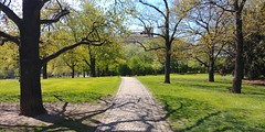 20170424_133518 (WhiteRabbitCZ) Tags: lg g6 smartphone review