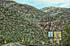 Tucson Day 1- Up The Mountian_031 (Mark Stumme) Tags: darktable luminancehdr nikond600 landscape tucson desert mtlemmon