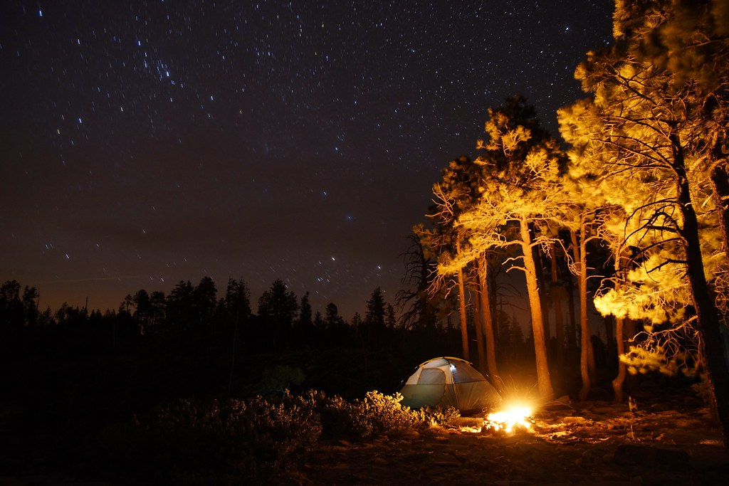 Camping In The Woods At Night Mogollon Nicleister Tags Arizona Southwest