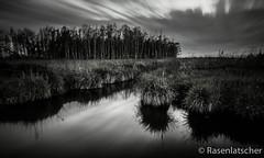Moorwald im Peenetal (Rasenlatscher) Tags: natur wolken monochrom moor landschaft wald spiegelung vorpommern langzeitbelichtung mecklenburgvorpommern naturschutz peene leefilter peenetal rasenlatscher