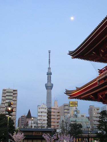 Skytree depuis Asakusa, Tokyo, Japon