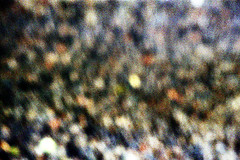 20-137 (ndpa / s. lundeen, archivist) Tags: nick dewolf nickdewolf 20 reel20 color photographbynickdewolf 1970s film 35mm 1972 kyoto honshu japan japanese  palacegrounds kyotoimperialpalace imperialpalace grounds misfire shuttermisfire blurry outoffocus cameramisfire blur