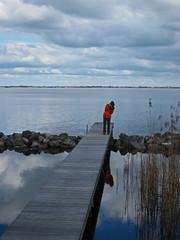 Friesland-26