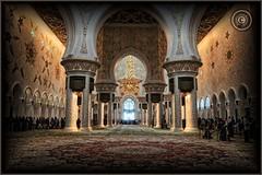 Abu Dhabi, United Arab Emirates (Wioletta Ciolkiewicz) Tags: city carpet capital ciudad mosque arabic abudhabi emirate unitedarabemirates citt zea miasto stolica sheikhzayedbinsultanalnahyan dywan meczet emiratiarabiuniti  emiratosrabesunidos sheikhzayedgrandmosque  uaezjednoczoneemiratyarabskie wiolettaciolkiewicz
