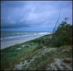 Baltic Sea (slavsja) Tags: sea sky film clouds lomography sand wind stones dune baltic diana fujifilm provia curonianspit curonian seaways rdpii
