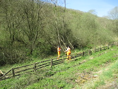 Michael and Andy deal with scrub near 11.5mp 3May14