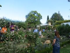 Garden of Steve and Jen Van Der Linde
