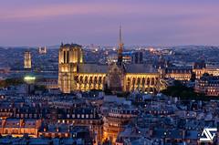 Notre Dame @ Blue Hour (A.G. Photographe) Tags: paris france nikon notredame cathdrale ag bluehour nikkor franais hdr parisian anto d800 quasimodo xiii parisien frecn antoxiii 70200vrii agphotographe