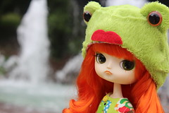 Froggy Dal (pullip_junk) Tags: dal custom froggy customdal requiemart