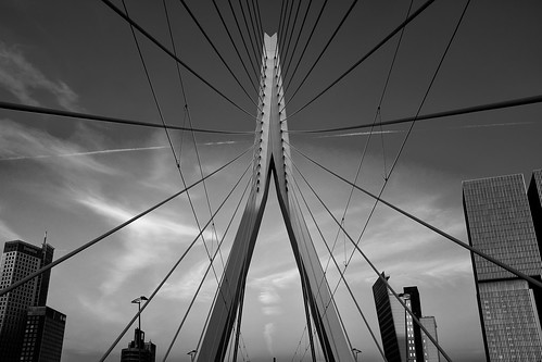 "The Erasmus Bridge in Rotterdam • <a style=""font-size:0.8em;"" href=""http://www.flickr.com/photos/68368751@N05/14219718614/"" target=""_blank"">View on Flickr</a>"