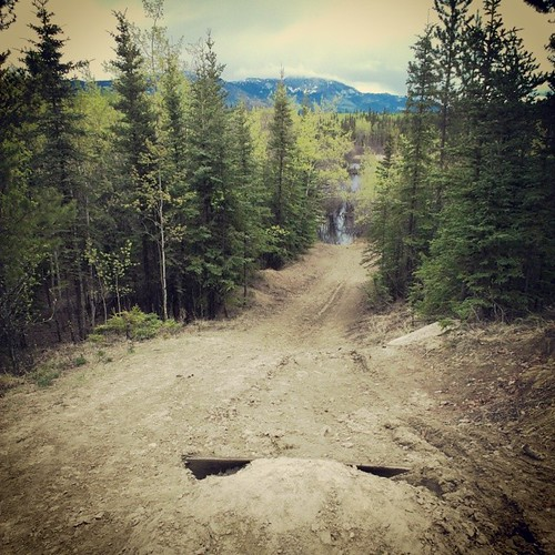 Trails to Paddy's Pond #yxy have a few bike jumps #yukon