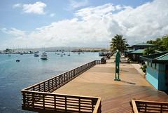 DSC_1150 (dannidisasterr) Tags: ocean trees sky boats puerto la palm rico ponce tablado guancha