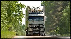 STM 2014 F800- 2942 (PS-Truckphotos) Tags: show truck sweden schweden lorry fotos sverige stm meet trucking lastwagen lkw 2014 strngns lastbil truckshow supertrucks truckpics truckspotter truckspotting truckertreffen truckphotos truckmeet showtrucks truckfotos lkwfotos stm2014f800strngns pstruckphotos lastbilstrffen strngnstruckmeet lkwpics lastwagenfotos lastwagenbilder stmstrngnstruckmeet