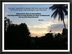 Whosoever fasts in Ramadhan and then follows it with fasting six days of Shawwal, it is as if he fasts forever. - Muslim (UmmAbdrahmaan @AllahuYasser!) Tags: muslim malaysia ramadhan 991 hadith ummabdrahmaan flickrandroidapp:filter=none