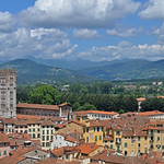 Italy - Lucca - view from Torre Guinigi thumbnail