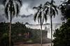 Tropical (Kesav....) Tags: love southamerica nature beautiful canon amazing waterfalls iguazu wonders hypnotizing grandeur iguazufalls digitalrebelxsi