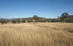 Wirraway, Mullaley NSW