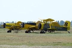 F-GFBJ (mduthet) Tags: midair schweizer g164