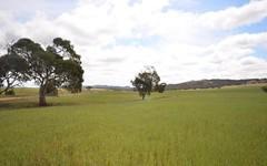 Various Secs Koo-owie Gap Road, Emu Downs SA