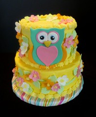 Owl cake by Yvonne, Twin Cities, MN, www.birthdaycakes4free.com