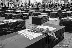 In memory of the victims in Gaza (andrealinss) Tags: blackandwhite bw berlin germany inmemory israel war photojournalism krieg potsdamerplatz gaza andrealinss nahostkrieg inmemoryofthevictimsingaza