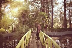 (GABITA1999. Thanks for your visit.....) Tags: parque parquedelota naturaleza arboles chile lota concepcion