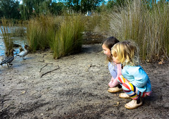 Making new friends (Marian Pollock (Weiler)) Tags: australia melbourne brighton landcoxpark children birds ducks lake squatting wonder pair grasses birdwatching girls