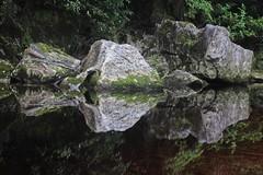 Stone Reflection (Tones Corner) Tags: rocks reflection nzbeauty nzscene nzbush oparara outdoor river