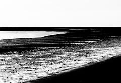 . . . shore (orangecapri) Tags: orangecapri bw contrast shore highkey minimal bareminimum sea shoreline blackandwhite beach explore explored