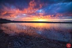 Amazing.. (Kasia Sokulska (KasiaBasic)) Tags: canada alberta prairies spring sunset sky clouds reflections landscape