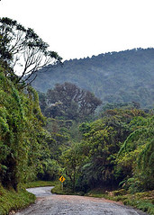 PURACE, COLOMBIA - via Popayan - Pitalito/ ПУРАСЕ, КОЛУМБИЯ - шоссе Попаян - Питалито (Miami Love 1) Tags: popayan purace parquenacional nationalpark попаян пурасе национальныйпарк нацпарк colombia colombian colombiano columbia колумбия колумбийский южнаяамерика латинскаяамерика латиноамериканский южноамериканский southamerica latinamerica