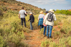 COP burra district field trip - red banks cp - apr 2017 - 4220843 (COPbiodiversity) Tags: pglc activities activity adelaidemetropolitan arid australia australian autumnfieldtrip baldinacreek billdoyle burra care cityofplayford community communitygroup cop council fieldtrip greening group hike hiking land landcare mallee midnorth mountloftyranges north northern playford playfordgreening playfordgreeningandlandcare pool redbanks redbanksconservationpark redbankscp reserve sa semiarid shrubland southaustralia southaustralian trail volunteer volunteering walker walkingtrail