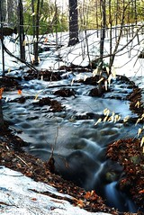 2017_0410Rushing-Run-Off0002 (maineman152 (Lou)) Tags: spring springrunoff springmelt brook stream flowing flowingwater nature naturephoto naturephotography landscape landscapephoto landscapephotography longexposure longexposurephoto longexposurephotography april maine