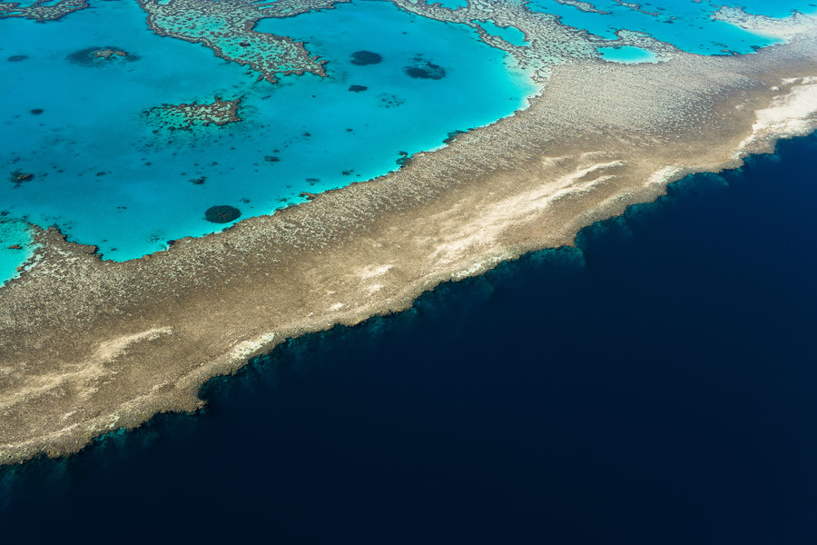 Part of the Great Barrier Reef at the edge of the abyss