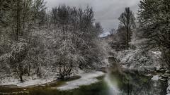 Je r'garde en arrière ! (Fred&rique) Tags: lumixfz1000 photoshop raw hdr jura rivière hiver neige arbres paysage nature