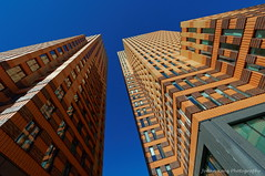 Songs of Symphony (Johan Konz) Tags: symphonytowers financial offices zuidas amsterdam netherlands outdoor bw blackandwhite architecture tower monochrome building symmetry lines geometric sky windows vertical diagonal modern pov perspective shapes urban lookup angle