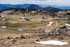 velika-planina05 (carlo) Tags: olympus em1 slovenia slovenija velikaplanina pomlad primavera spring