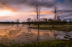 Spring meadows at sunset (kamilgalanek) Tags: meadows water trees sunset sky colors clouds