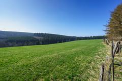 20170409_bieley_0040.jpg (elmayimbe) Tags: schwalmbachtal monschau kalterherberg deutschland weide landschaft europa eifel perlenbachtal