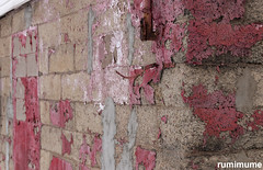 worn (rumimume) Tags: potd rumimume 2017 niagara ontario canada photo canon 80d sigma winter outdoor morning urban block concrete peeling paint