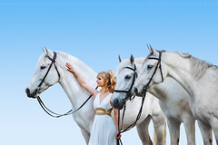 Amazing Anna (Tanya Yurkovska) Tags: horse horses equine equestrian beauty white woman rider stallion outdoor stable animal herd person equinephotography horsephotography equinephotographer pferd dress proffesionalphoto girl whitehorse