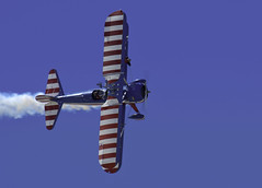 Wing Walker Topside (dcnelson1898) Tags: 2017mcasyumaairshow yuma arizona desert winter mcasyumaairshow planes outdoors gregsheldonairshows 450superstearman biplane wingwalker patriotic aviation