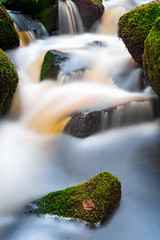 Wyming Brook (Aaron Miller Photo) Tags: long landscape longexposure nikon nikonflickraward nikonuser nature nikond7100 iamnikon image images water walk woods wood wild sheffield south southyorkshire stream photography photo photograph park peak photooftheday photographer photos peaks peakdistrict path pebbles rocks wildlife wildlifetrust yorkshire yorks yorkshirewildlifetrust naturephoto national england uk green great greatbritishlandscape greatbritain