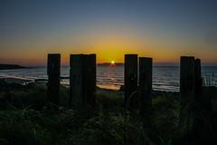 and your spirits rise..... (A Costigan) Tags: fencefriday fence dublin lambay sunrise sunlight dawn irishsea ireland canon eos outdoor nature water waterscape seascape ocean sea beach sand coast seaside
