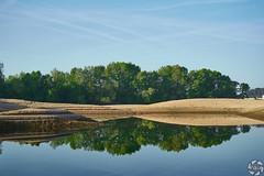 Reflets de Verdure II (PaaulDvD) Tags: loire river landscape morning sunrise water colors reflet sun soleil outdoor maineetloire paysdelaloire unesco patrimoine loirevalley