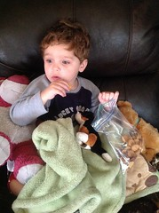 (Cheeseisboss) Tags: toddler cookies movietime benjamin snacking