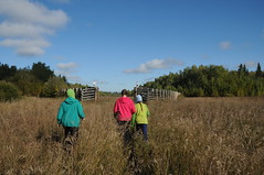(AmyIrie) Tags: park wood trip camping station kids outdoors bush buffalo peace place hiking pad delta september special national alberta gps northern athabasca 2014 sweetgrass wbnp peaceathabasca sweetgrass20142