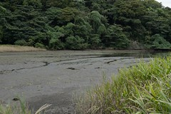 Dry land of Koajiro (kzmiz) Tags: japan nd kanagawa density neutral miura misaki dryland nd4 koajiro nikond800e
